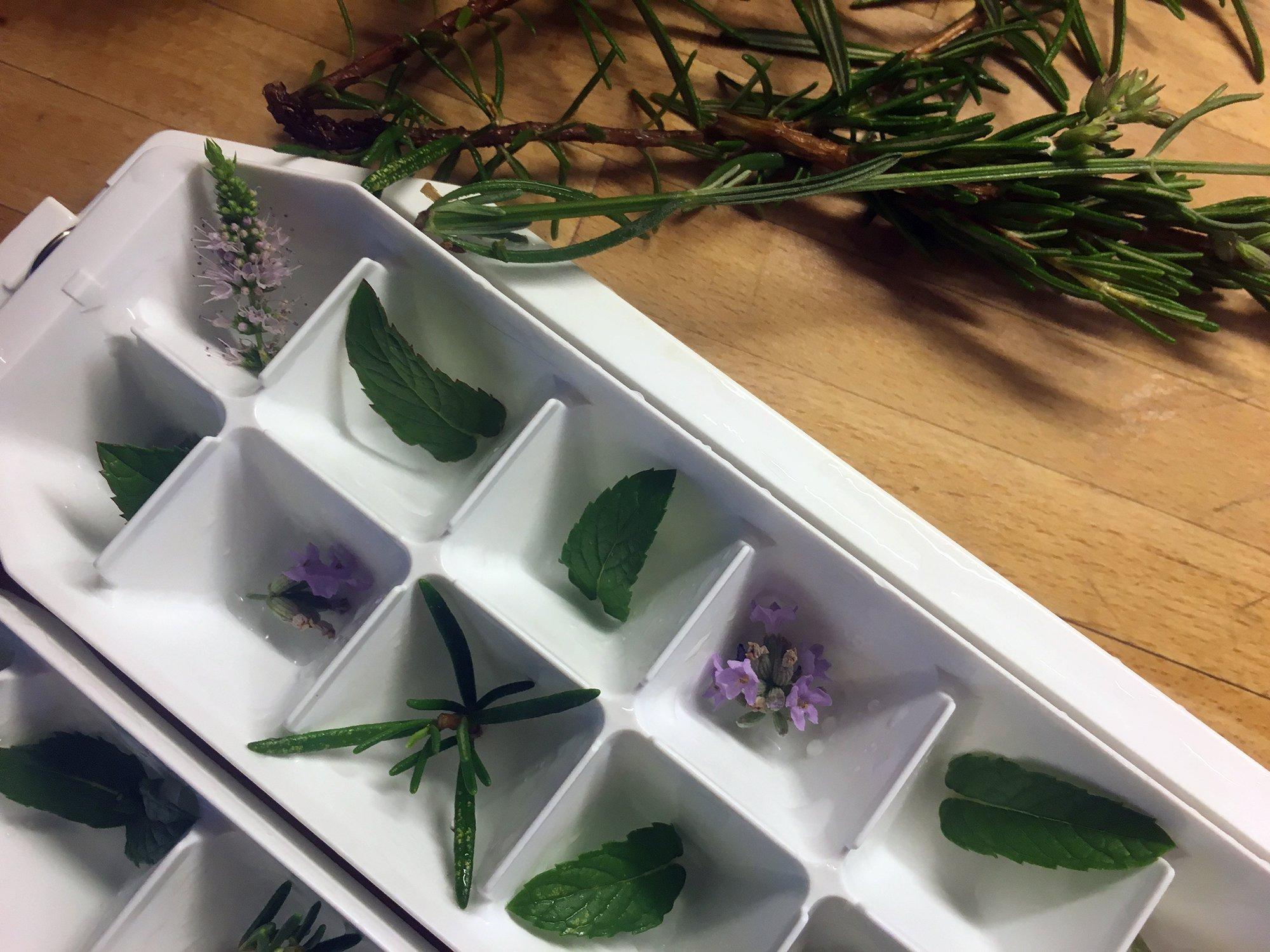 cubitos de hielo aromaticos, ecoherbes