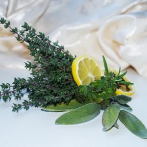 limon y hierbas aromaticas digestivas