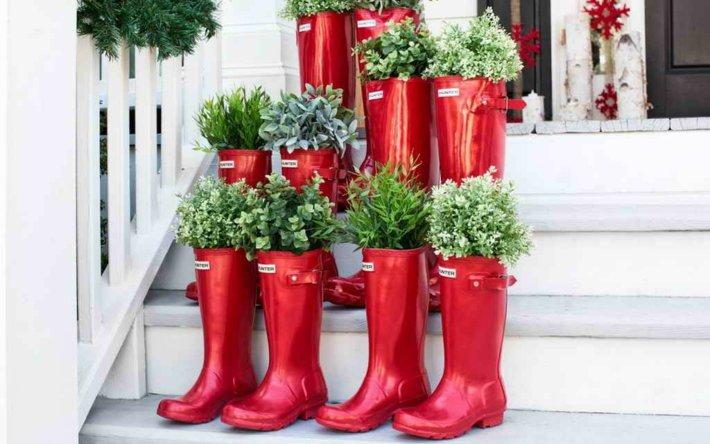 decoraciones navidad, plantas aromaticas, ecoherbes
