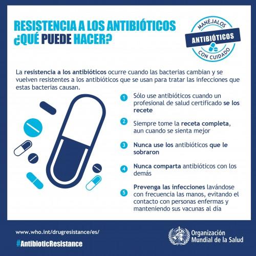 resistencia a los antibiotico infografia