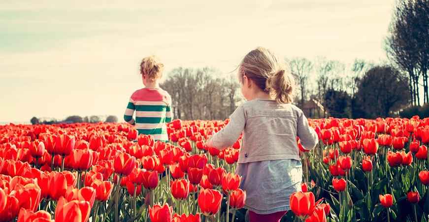 beneficios del turismo sostenible, niños campo de tulipanes, ecoherbes