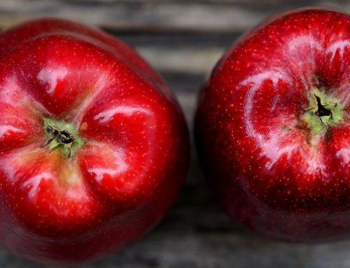 ¿Cómo mantener el sistema circulatorio sano?