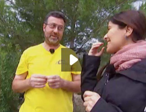 Ecoherbes, protagonista en Espai Terra de TV3