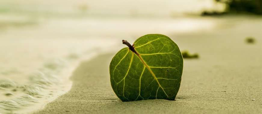 Resultado de imagen para vacaciones sostenibles