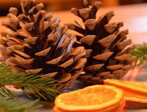 Decoraciones navideñas con plantas y otros elementos naturales