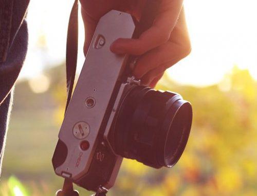 Practica la fotografía de naturaleza en Ecoherbes Park