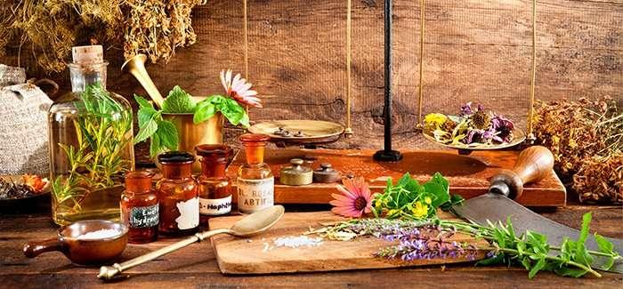 La fitoterapia, terapia con plantas medicinales | Ecoherbes